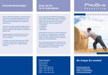 flyer_prosys_v1c_blau-1