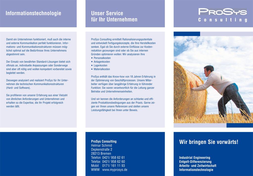 Flyer für ProSys Consulting
